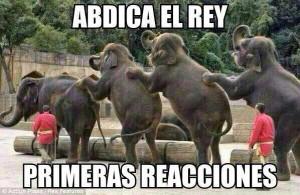 Memes Juan Carlos I elefantes