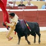 Todos los toros son peligrosos y deben ser aniquilados