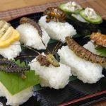 Peligrosa dieta insectívora se pone de moda
