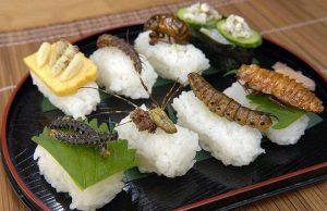 Sushi de insectos