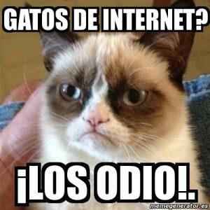 odio_a_los_gatos
